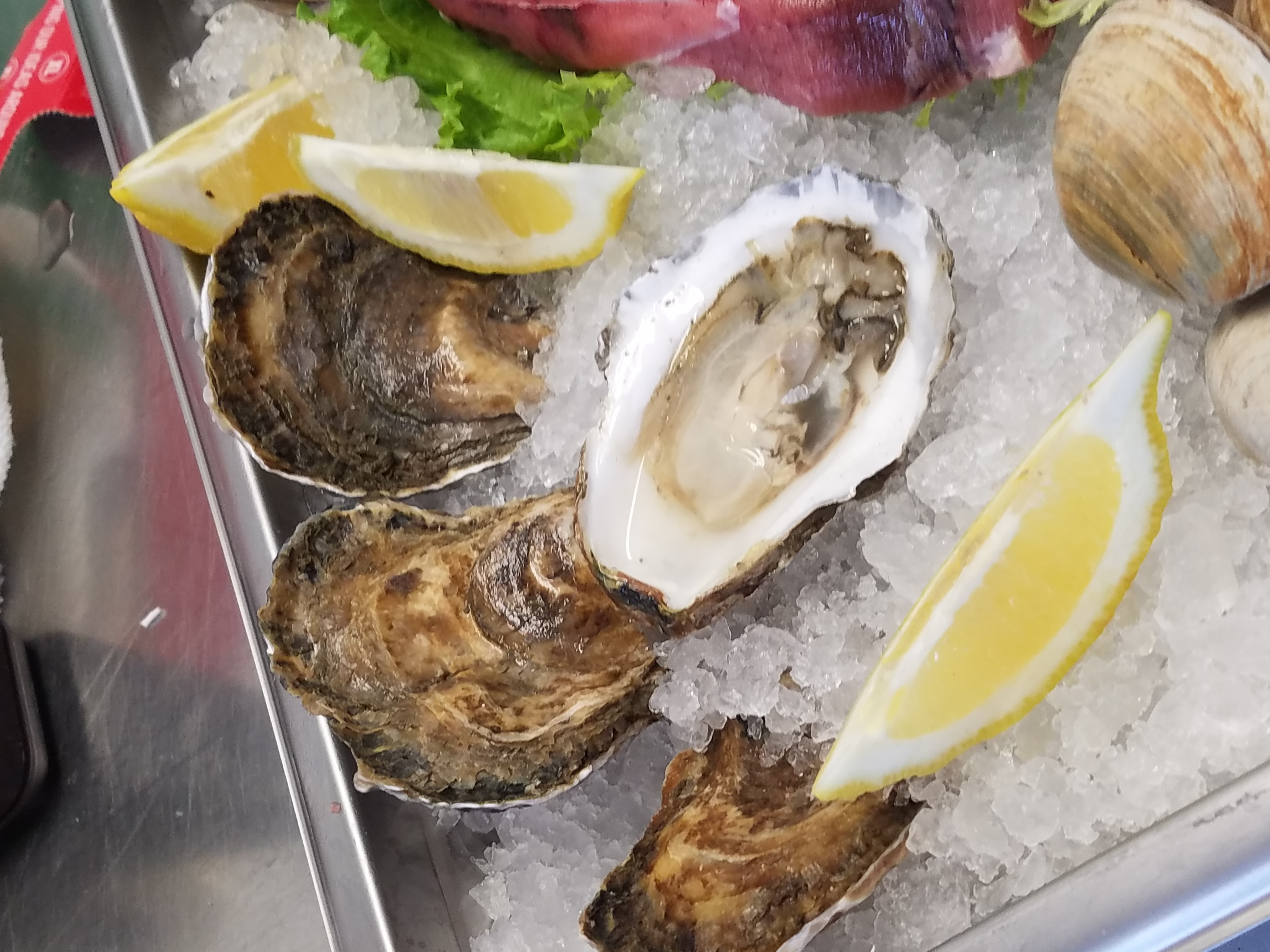 Chappy Oysters